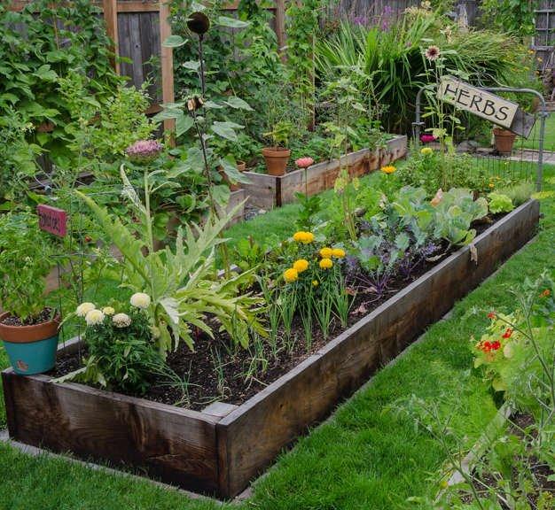 Raised veggie garden bed