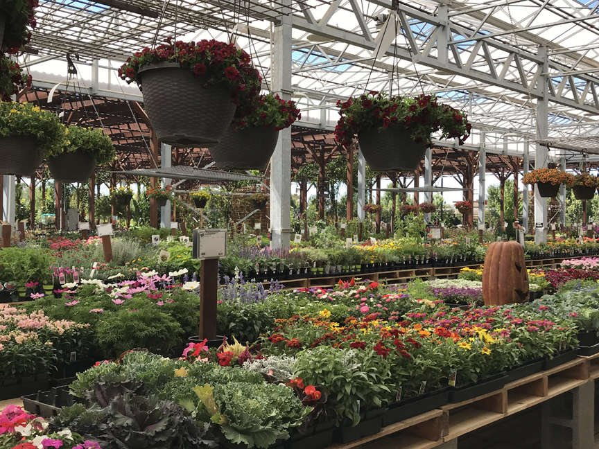Green Acres plants