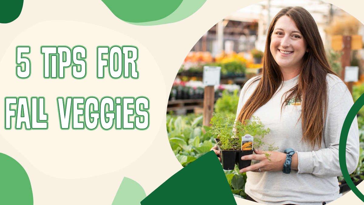 5 Tips For Fall Veggies