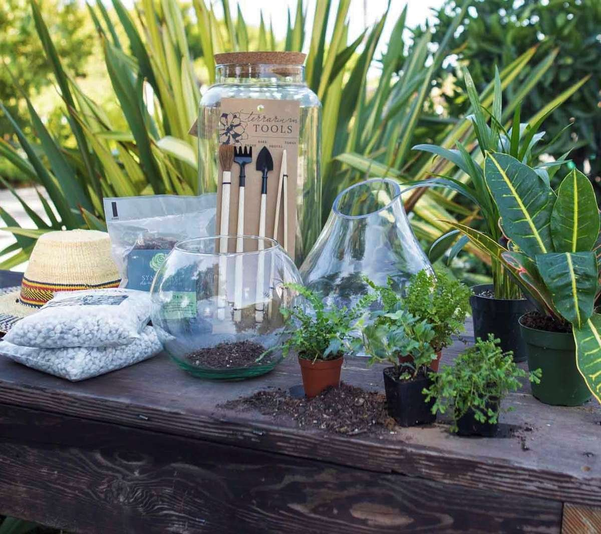 Terrarium supplies on table
