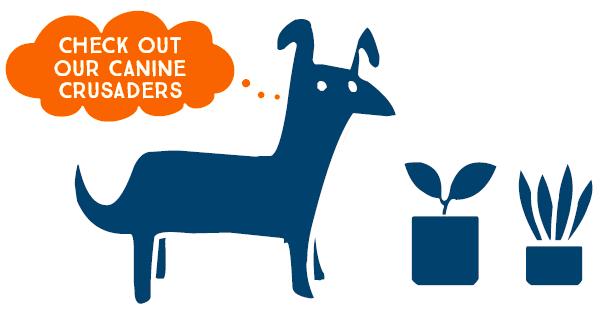Cartoon Image of dog with plants