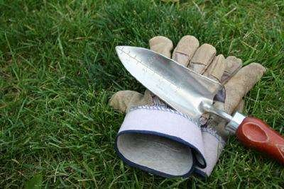 Trowel and gloves on grass