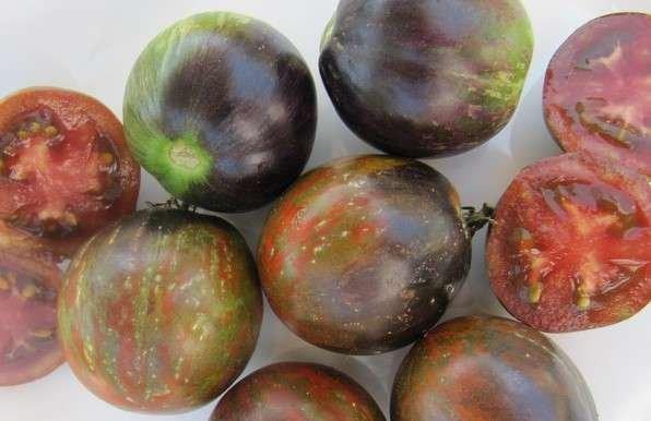 Wild Boar Tomato: Cosmic Eclipse