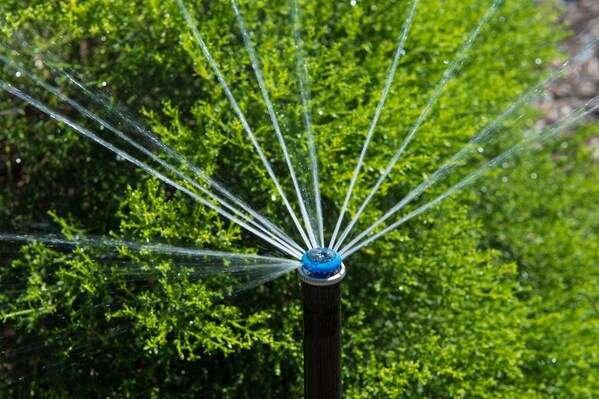 MP Rotator watering green shrub