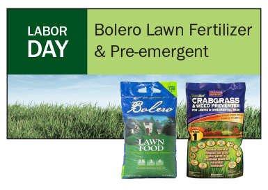 Labor Day: Apply Bolero Lawn Fertilizer & Bonide Crabgrass & Weed Preventer