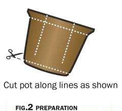 Illustration of where to cut a pulp pot for planting