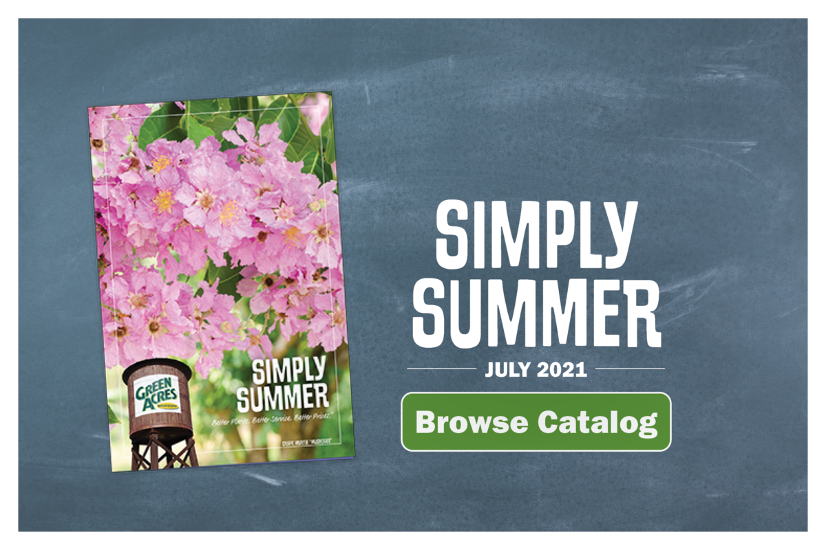 Browse Green Acres Inspiration Catalog - Here Comes the Sun