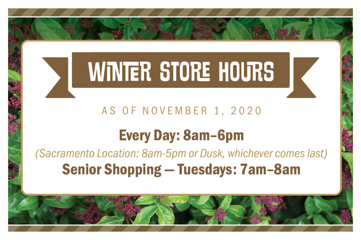 Winter Store Hours; Everyday: 8am-6pm (Sacramento Location 8am-5pm or Dusk, whichever comes last). Senior Shopping Tuesdays 7am-8am