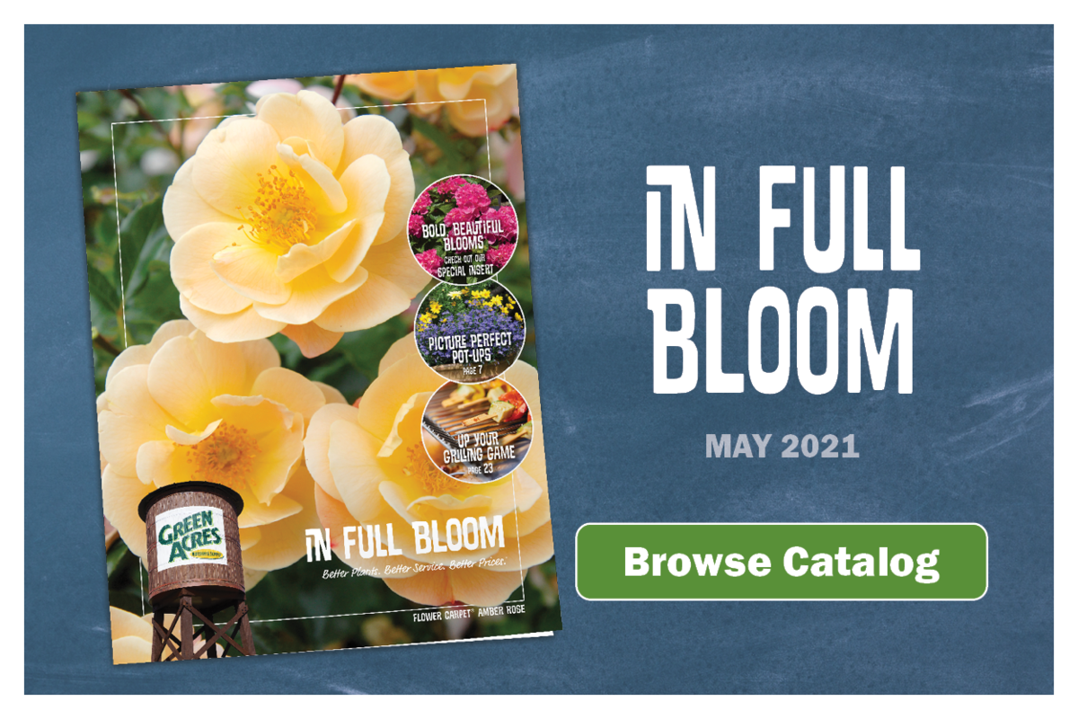 Browse Green Acres Inspiration Catalog - In Full Bloom