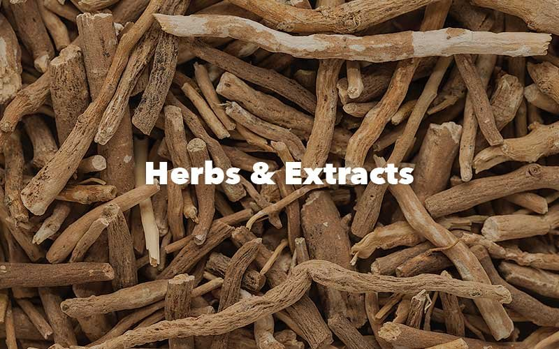 Brain Forza Herbs and Extracts