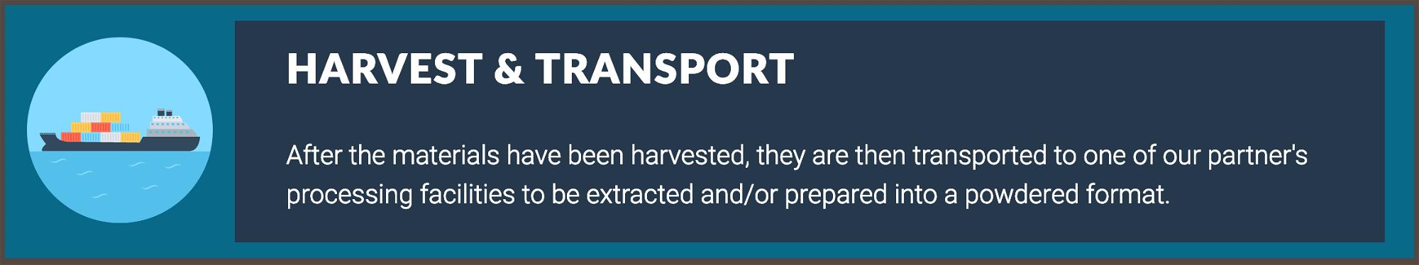 Brain Forza Harvest, transport