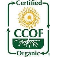 Brain Forza CCOF Certified Organic Medicinal Mushrooms