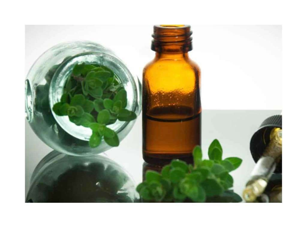 oregano oil for cellulite reduction