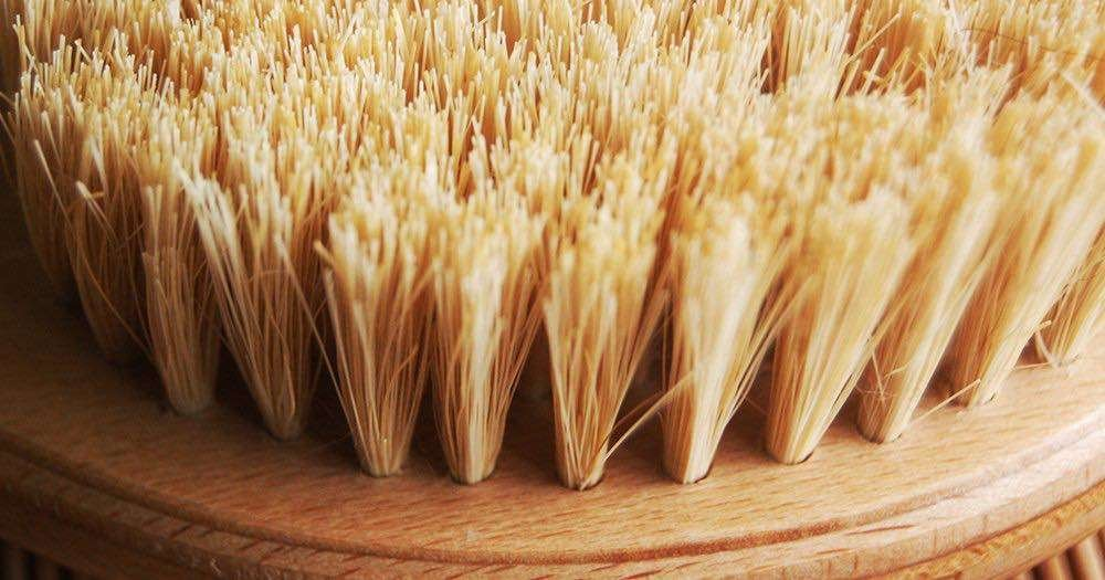 best home cellulite treatments dry brushing