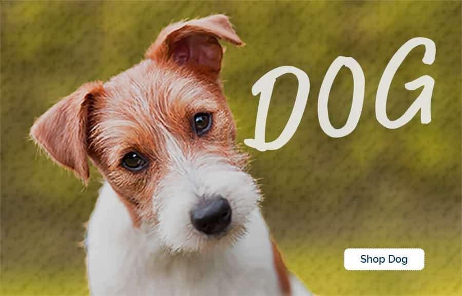Shop for healthy natural dog food