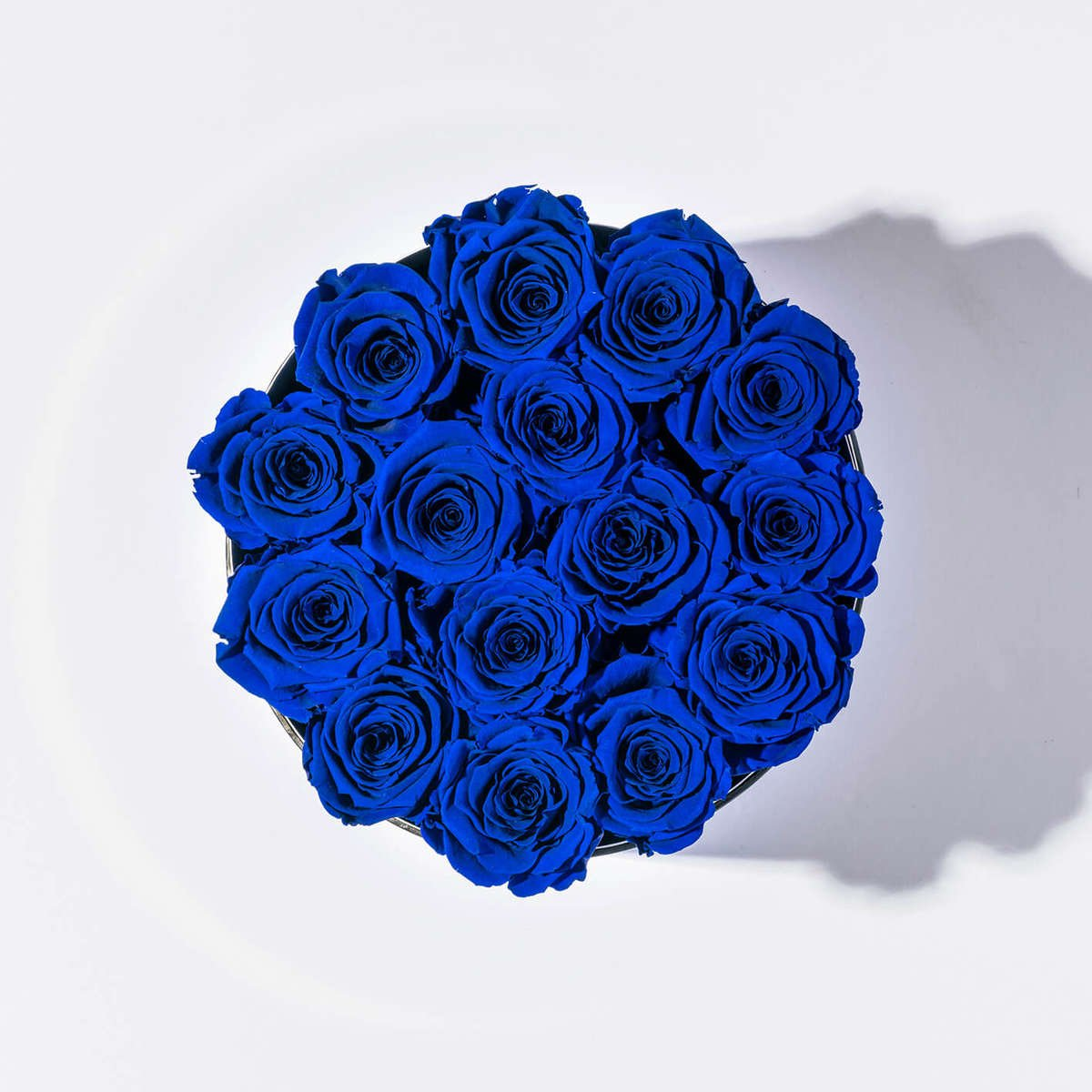 significato-rose-blu