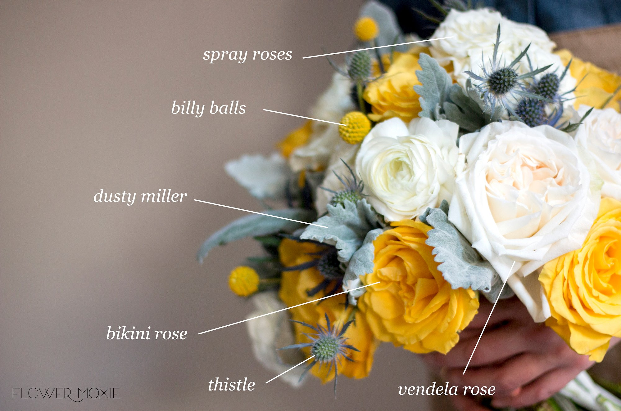 Yellow wedding color palette, gold and yellow roses, billy balls, Yellow Bridal Bouquet, Bikini yellow roses, thistle bouquet, brunia, dusty miller, Flower Moxie, DIY Wedding bouquet
