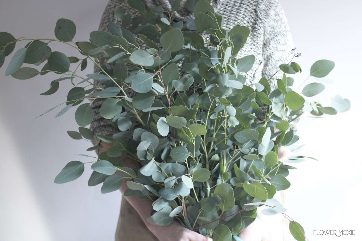 silver dollar eucalyptus, wedding greenery, how to save money wedding planning, plan your own wedding, diy flowers, diy bride, diy wedding, diy bridesmaids, diy bride, diy bouquet