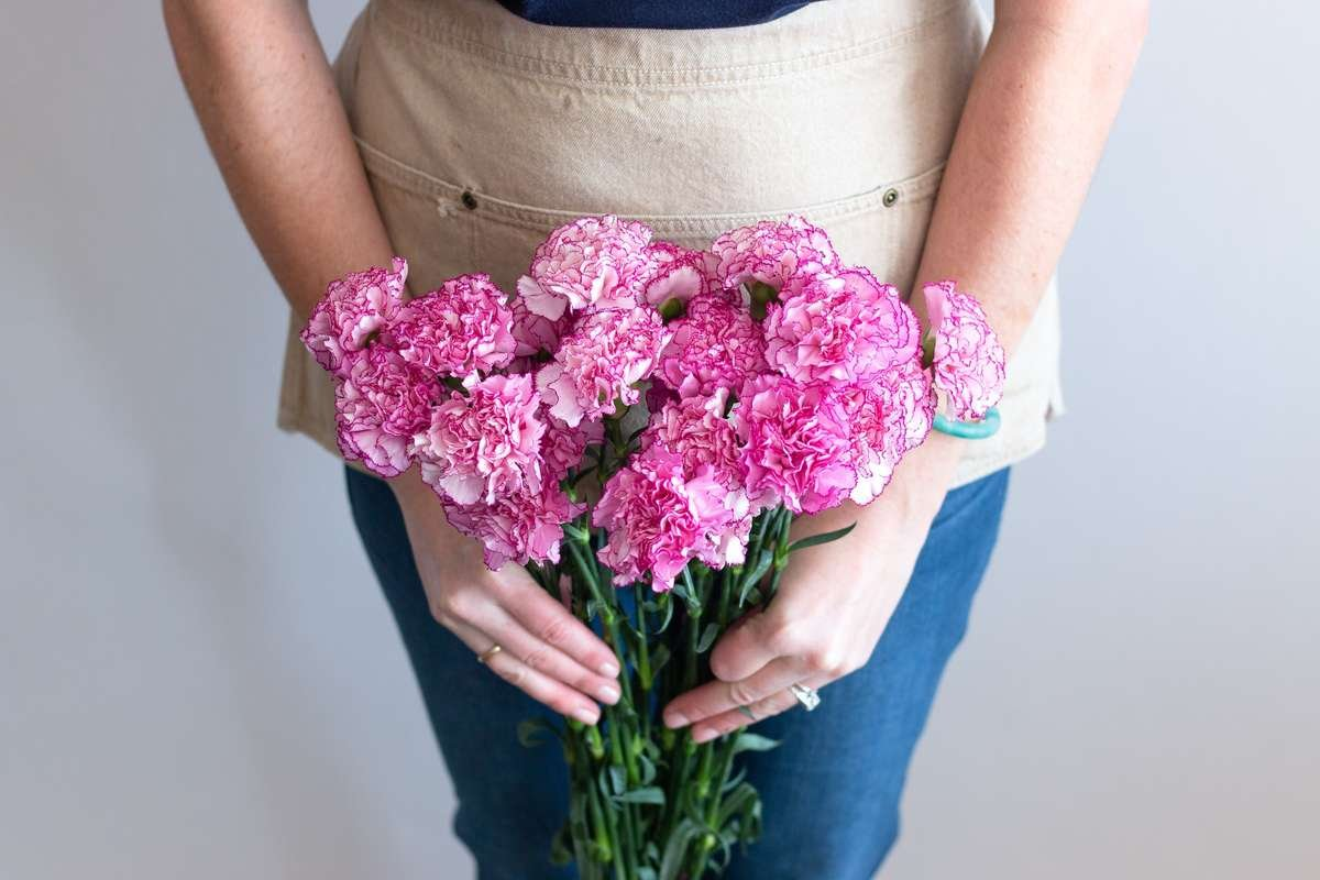 fancy carnation, komachi carnation, diy wedding flowers, diy wedding bouquet, flower moxie