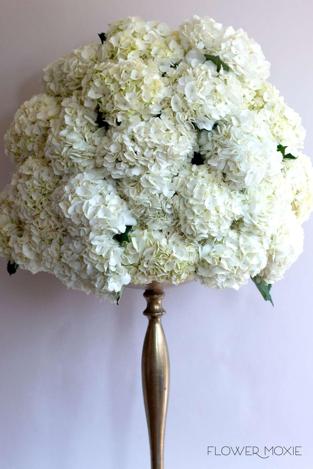 White ceremony flowers, hydrangea centerpiece, hydrangea bridal bouquet, large white bouquet, Flower Moxie, DIY wedding flowers