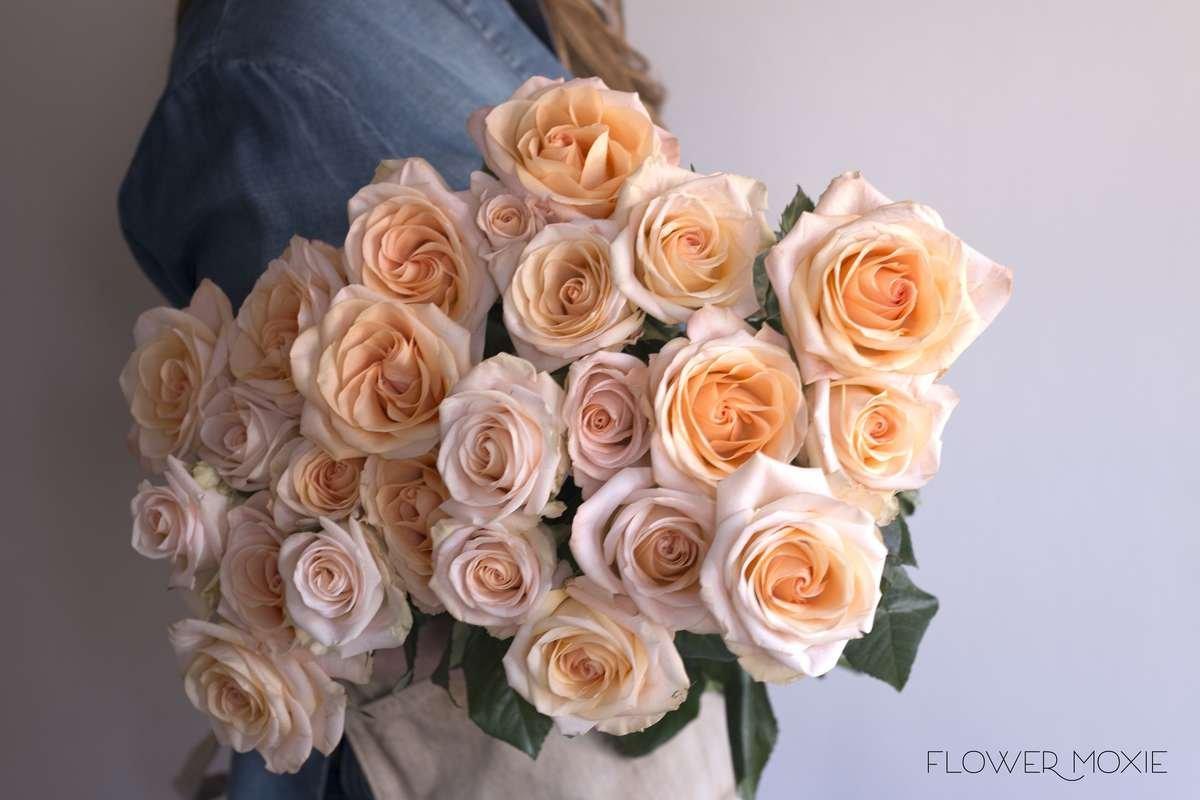 Free Spirit rose, orange rose, garden rose, coral rose, bright wedding flowers, DIY wedding flowers, Flower Moxie, flowermoxie