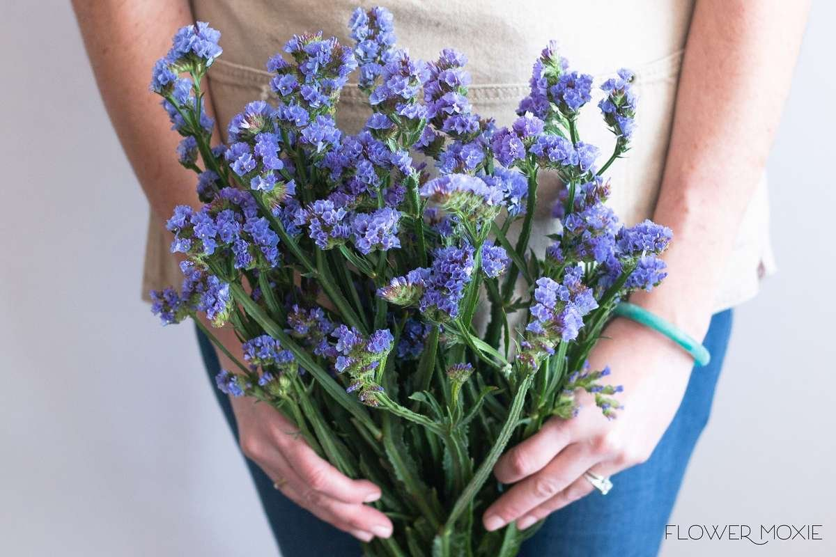 statice, blue statice, purple statice, flower moxie, flowermoxie, diy wedding flowers, wedding filler flower, fifty flowers, bloominous