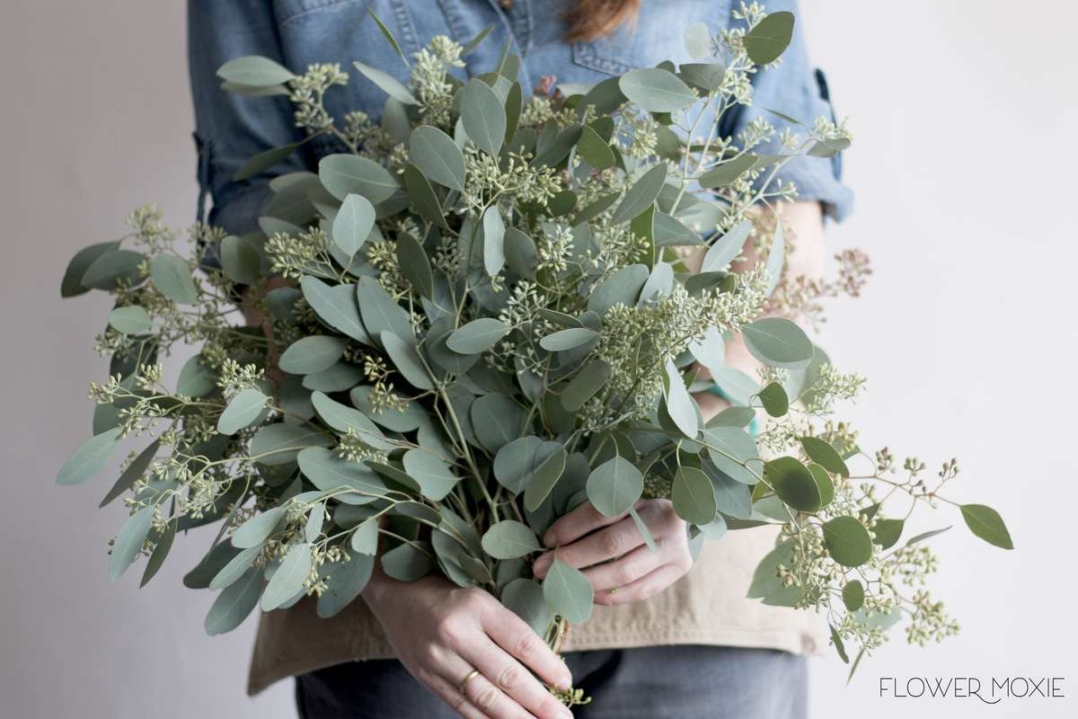 seeded eucalyptus, seeded eucalyptus bouquet, seeded eucalyptus wedding, flower moxie, moxie bride