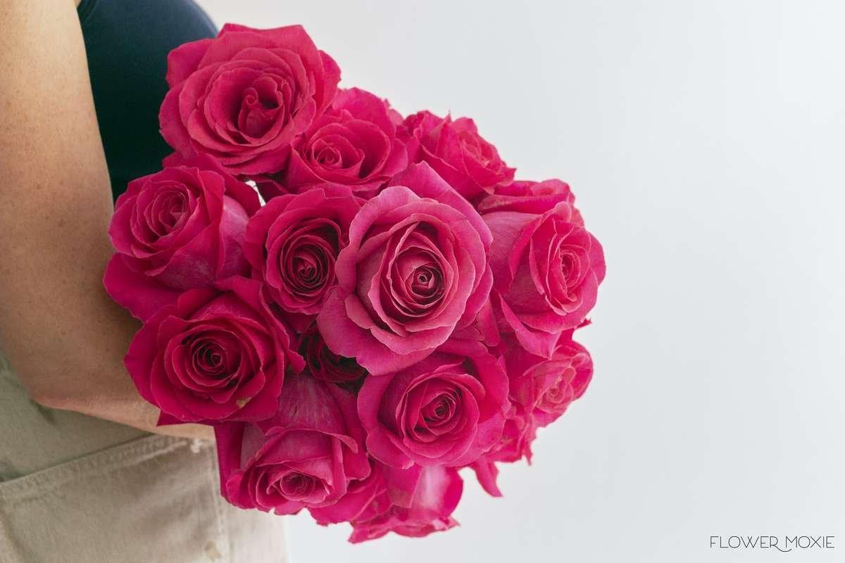 Pink Floyd Flower Moxie