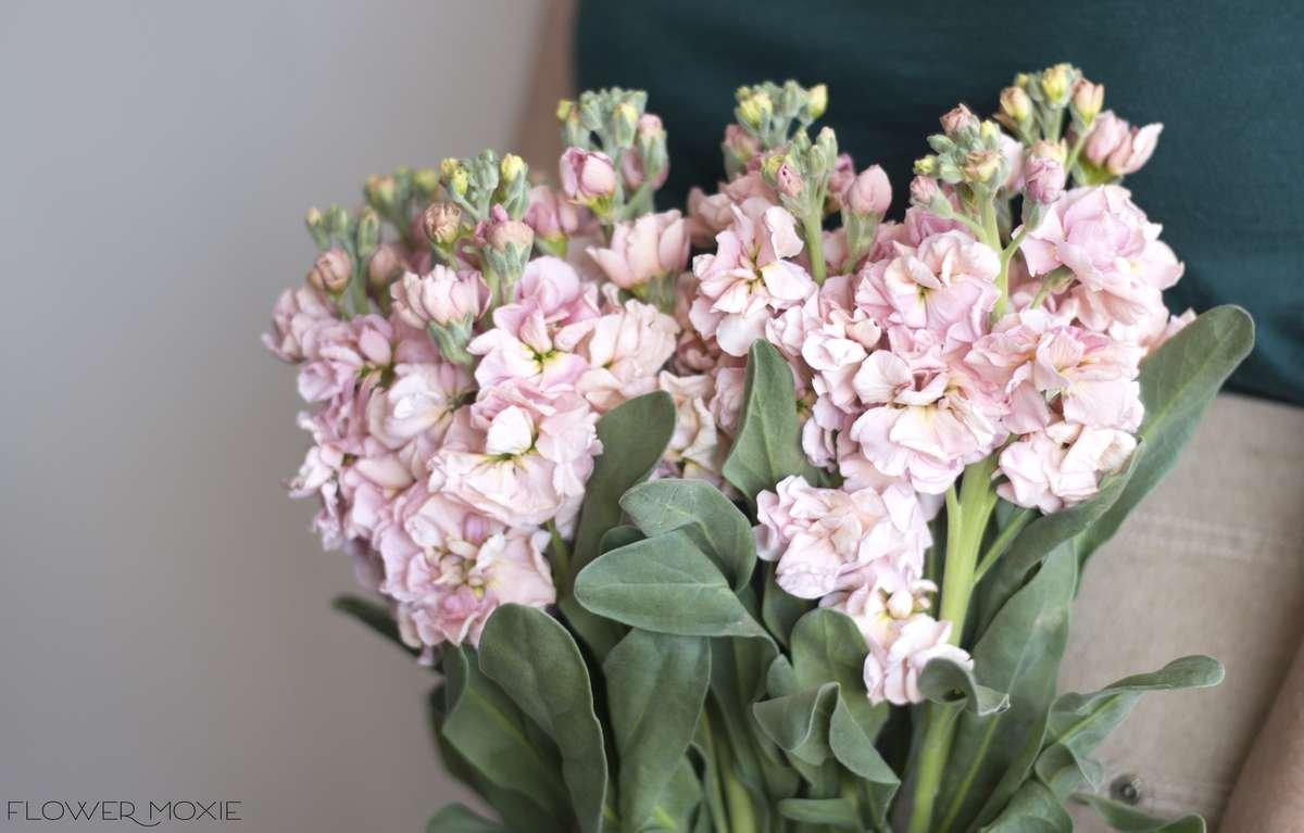 peach stock, flower moxie, moxie bride, diy wedding flowers