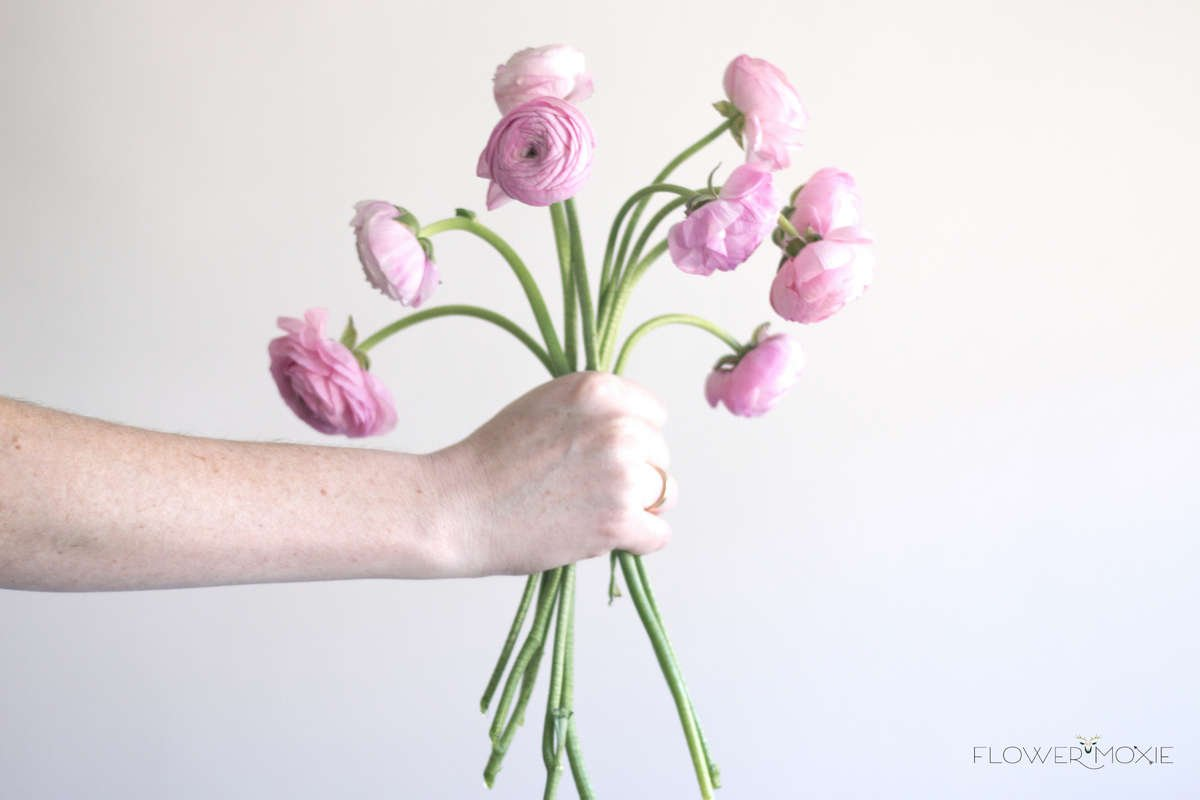 ranunculus, pink ranunculus, wedding flowers, diy flowers, diy wedding, diy bride, diy ideas, diy wedding ideas, white ranunculus, cheap flowers, affordable flowers, how to save money wedding