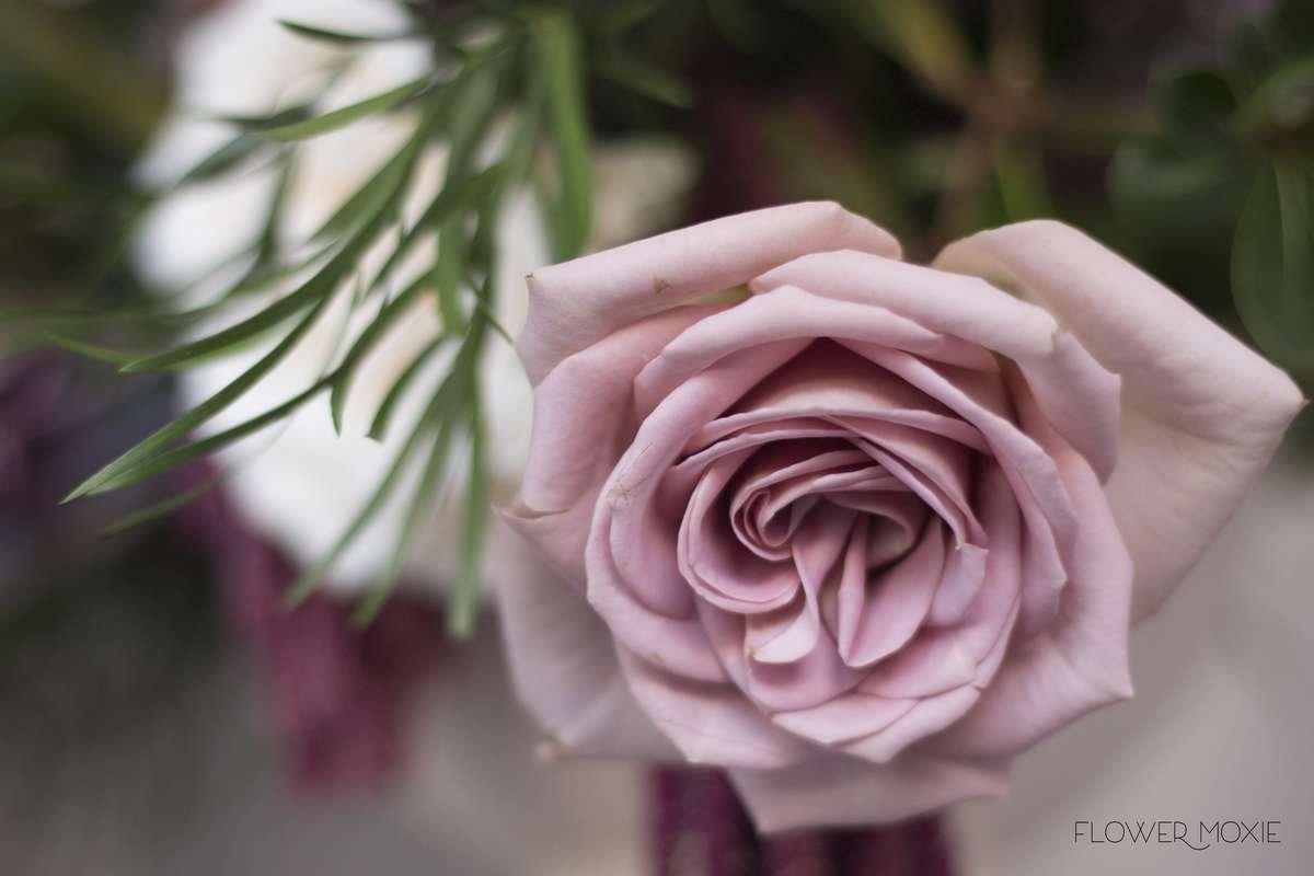 amnesia rose bouquet, moody bouquet, weeping podocarpus, scabiosa bouquet, burgundy ranunculus, organic bridal bouquet, flower moxie