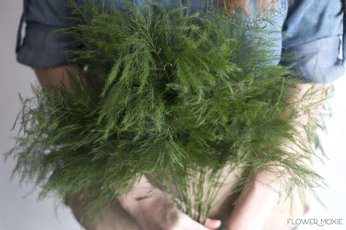 Tree fern | Flower Moxie | woodland themed wedding ideas | bohemian wedding ideas | DIY bride | DIY flower ideas | DIY wedding ideas | DIY bouquet ideas | DIY bridesmaid | DIY bridal bouquet ideas