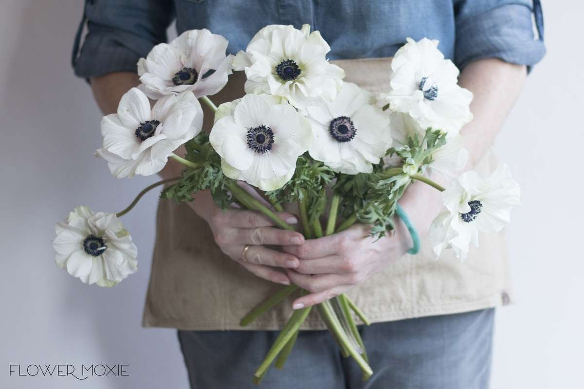 Anemone white flower moxie white anemones navy flowers flower moxie diy wedding flowers izmirmasajfo