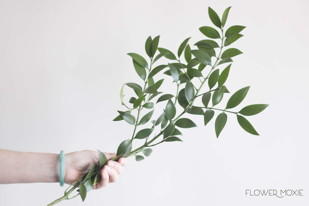 nagi, nagi greenery, flower moxie, moxie bride, diy wedding flowers