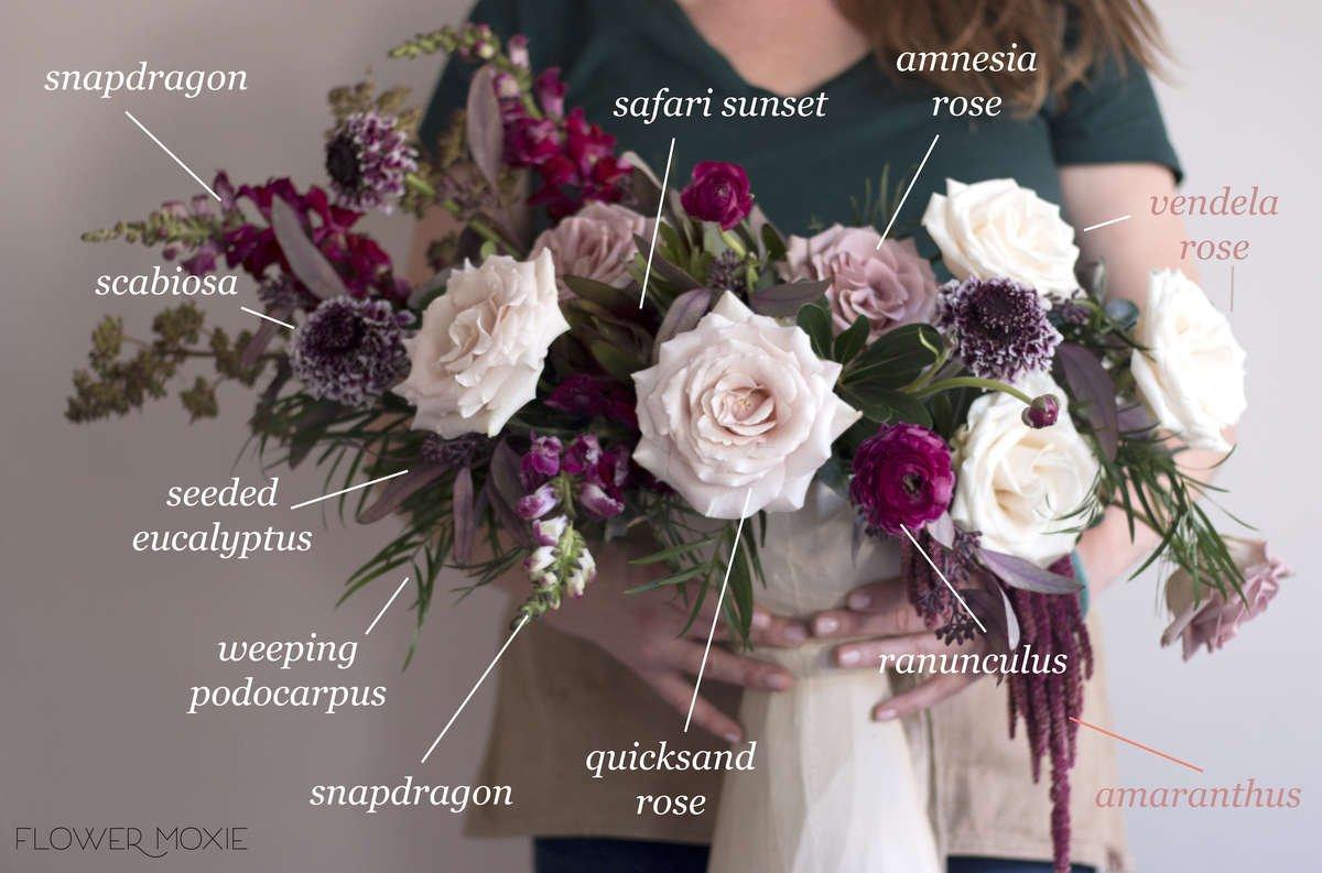 Amaranthus - Hanging — Flower Moxie