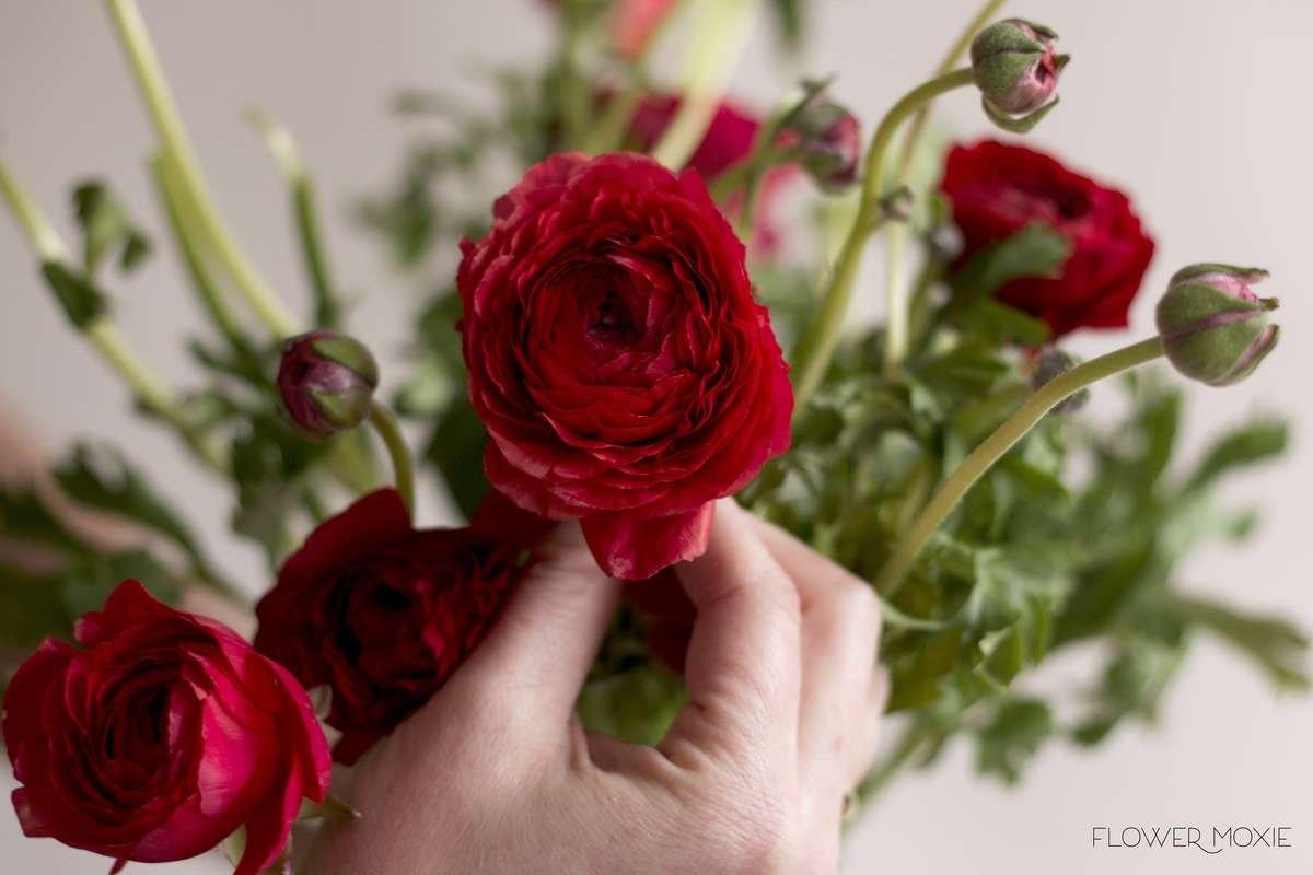 red ranunculus, flower moxie, diy bride, diy wedding flowers, wholesale wedding flowers
