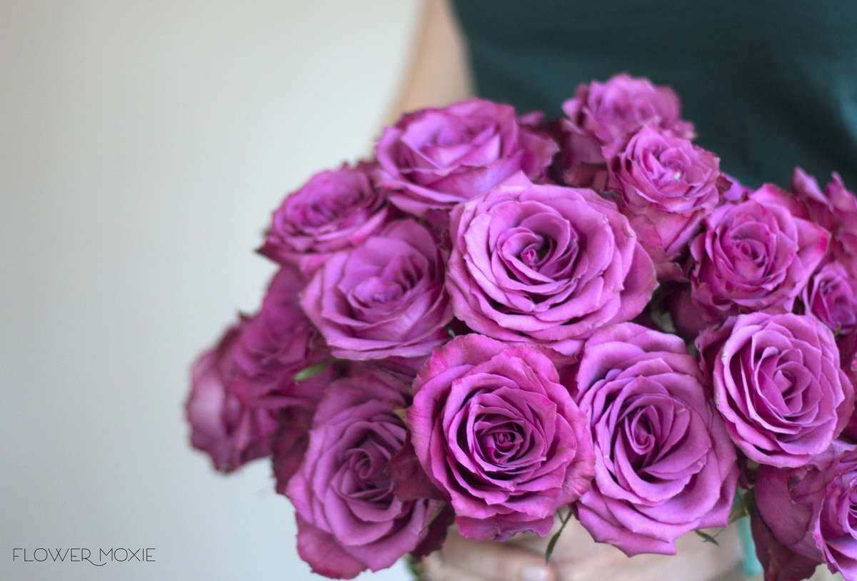 Blueberry rose, muted fuchsia rose, pink rose, burgundy wedding palette, fall wedding colors, diy bride, diy flowers, diy bouquet, diy wedding, diy wedding ideas, flower moxie, what does a bikini rose look like, wedding ideas, make your own bouquet, make your own wedding bouquet, flower moxie