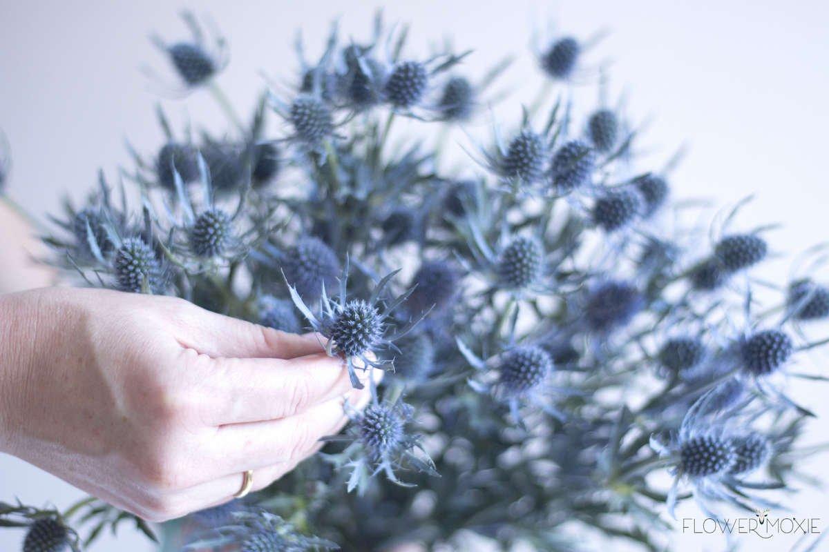 thistle, diy flowers, diy bride, diy wedding, diy bridal bouquet, blue flower, spiky flower