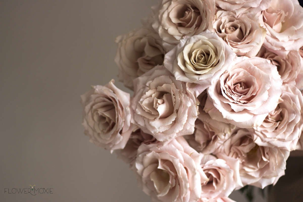 quicksand roses, flower moxie, diy bride, diy wedding, diy flowers, mauve roses, soft hue roses, diy bridesmaid, diy bridal bouquet