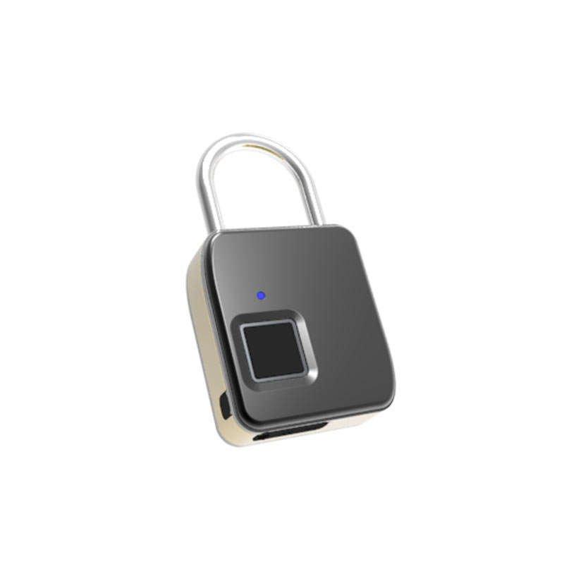 aquavault travel size fingerprint biometric pad lock