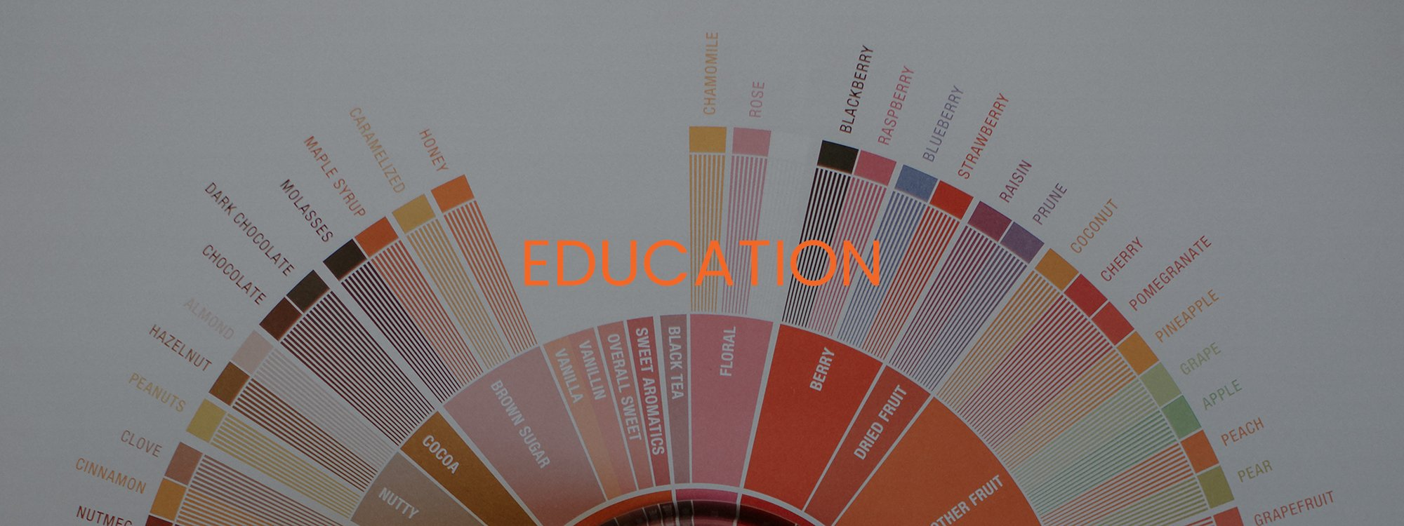 EDUCATION - SCA FLAVOR WHEEL