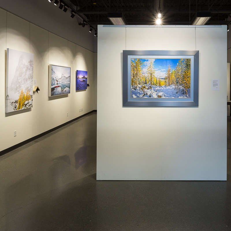 calgary art gallery, shop art online