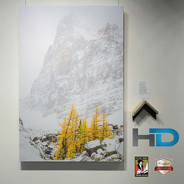 calgary canvas printing, canvas printing, canada canvas printing, canvas, photos on canvas, photo to canvas