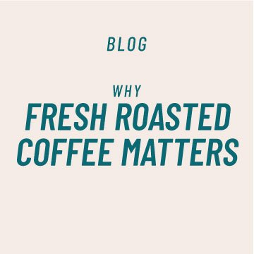 Why Fresh Roasted Coffee Matters | Kaldi's Coffee Blog