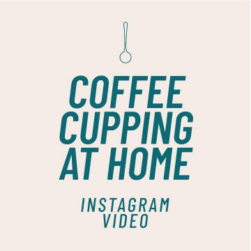 How to Cup Coffee at Home | Tasting Coffee at home | Instagram video