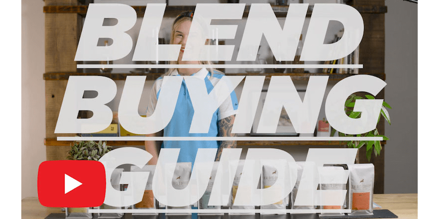 Blend Buying Guide Video with Kiersten