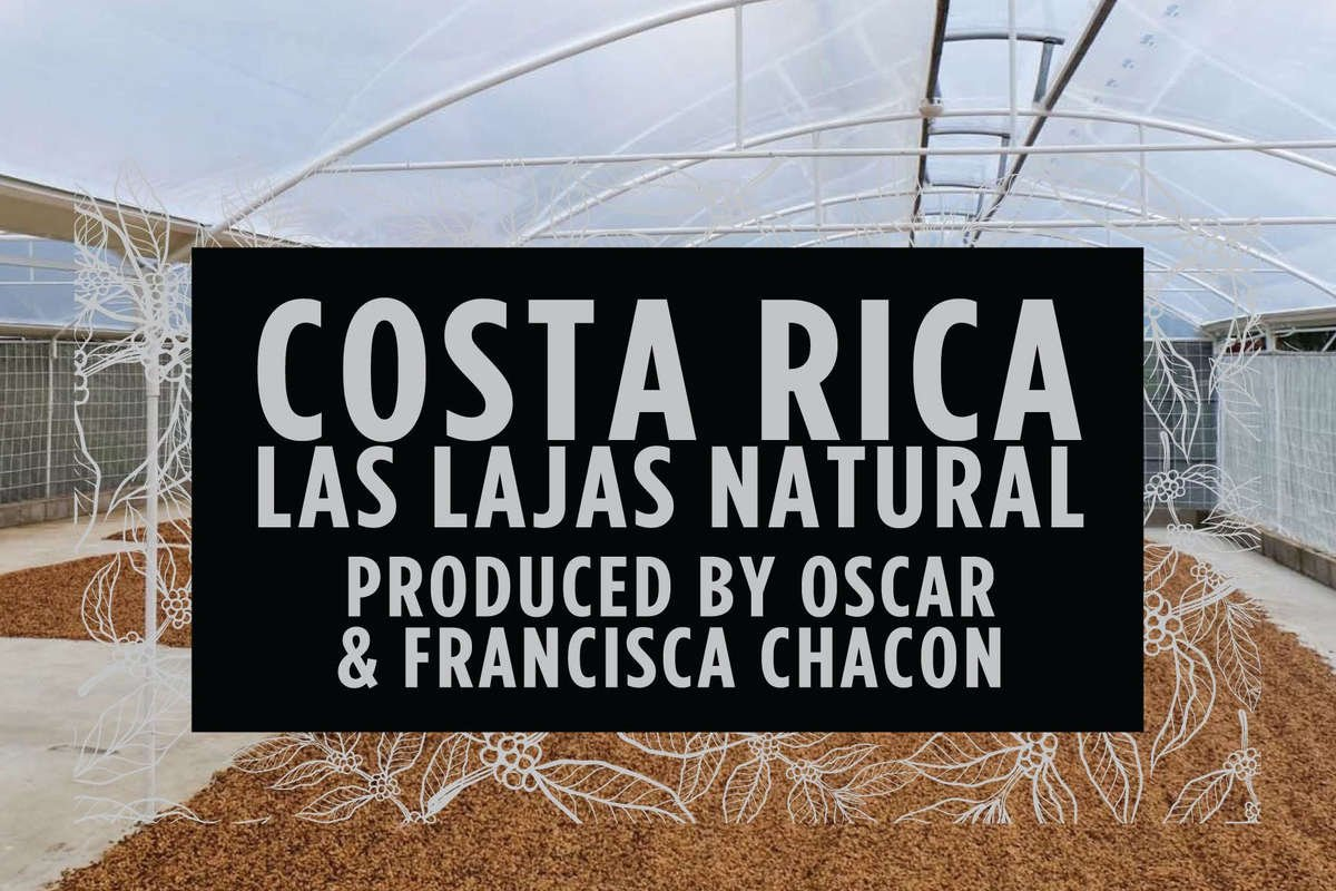 Costa Rica Las Lajas Natural