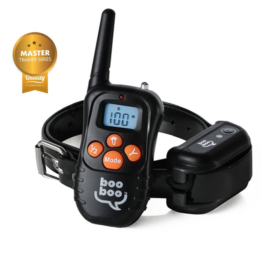 remote training collars on white