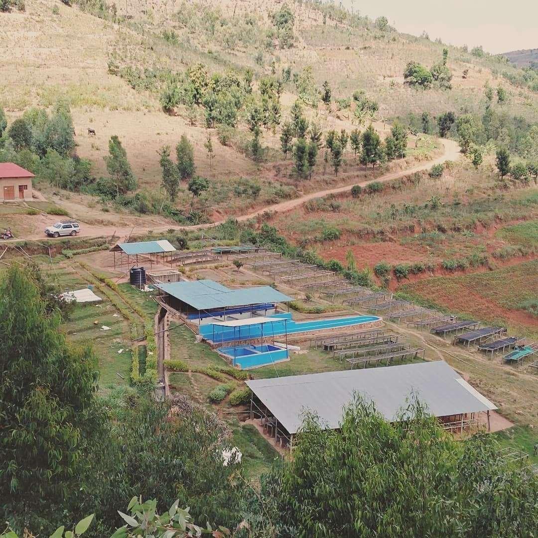 Kaffee Washing Station in Ruanda.