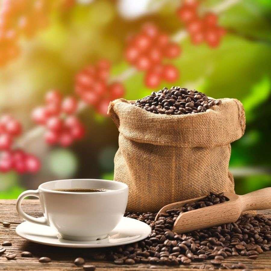 Röstkaffee aus Mexiko. Frisch geröstete mexikanische Kaffeebohnen.